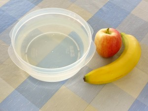 apple science fall fun experiment