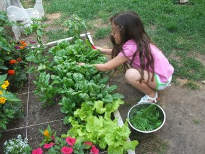 kids' gardening fun and learning