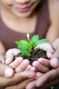 gardening activities with kids
