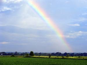 rainbow-pdp
