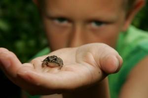 nature helps get ready for kindergarten