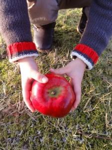 johnny appleseed birthday