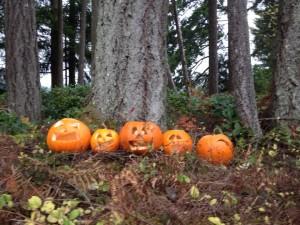 pumpkin after Halloween