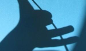 shadow play groundhog play