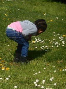 spring nature math walk