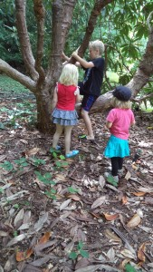 nature play and fairies