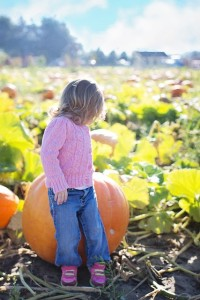 visit to pumpkin patch