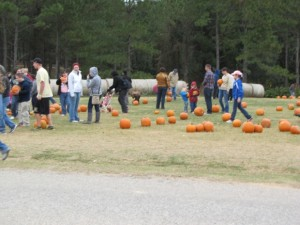 visiting pumpkin patch