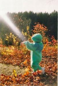 sunbeam in autumn