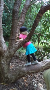 girl climbing tree gender equality